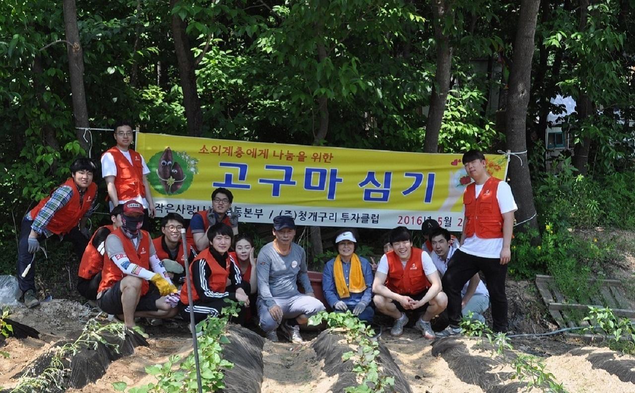 청개구리투자그룹, 소외계층 나눔 위한 고구마 심기 봉사 펼쳐